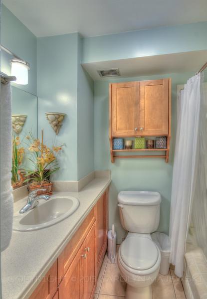 fv-bathroom2013.jpg