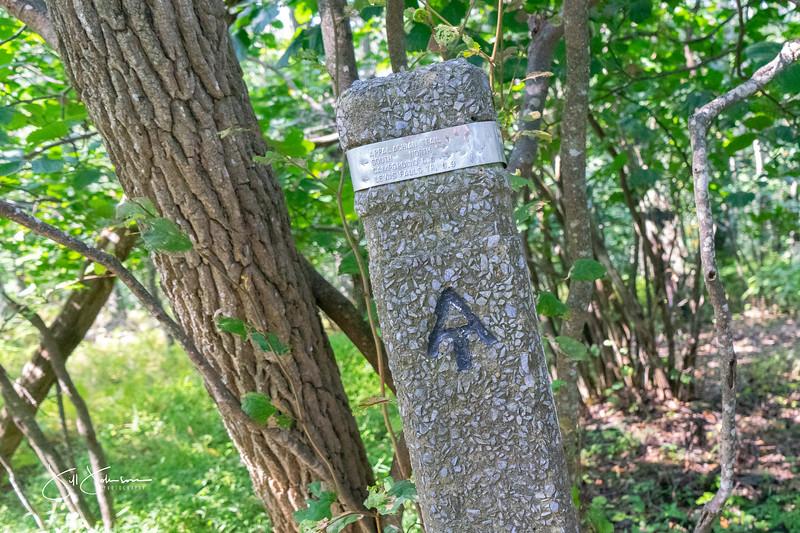 at hike-00630.jpg