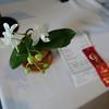 Karen Marache's delicate baby orchid