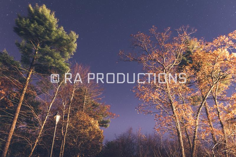 Night_Sky_Stars_PowerOutage-110617-10.jpg