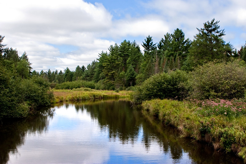 View from Terabithia | Little Escanaba River