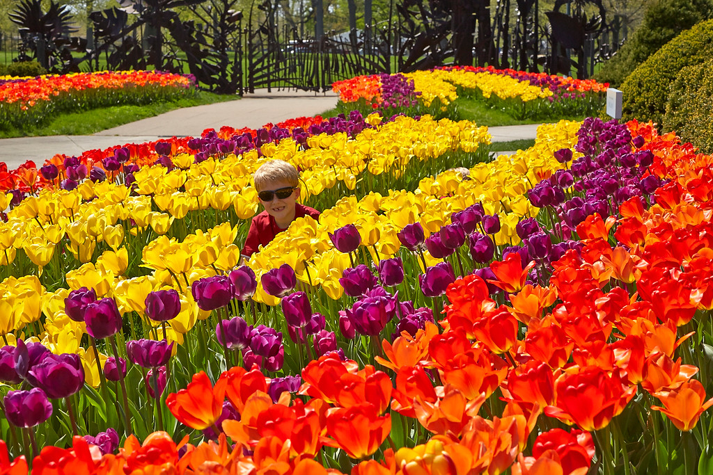 . Get some color in your life with �Spring Blooms,� a new show at the Cleveland Botanical Garden, featuring thousands of outdoor bulbs, indoor and outdoor flower boxes and arrangements, tips for the home gardener and children�s activities, April 1 through May 13. Call 216-721-1600, or visit www.cbgarden.org. (Submitted)