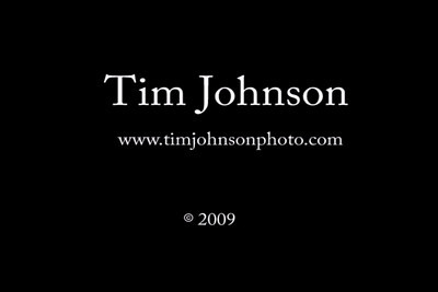 TIM JOHNSON Calligraphy:  calligraphy