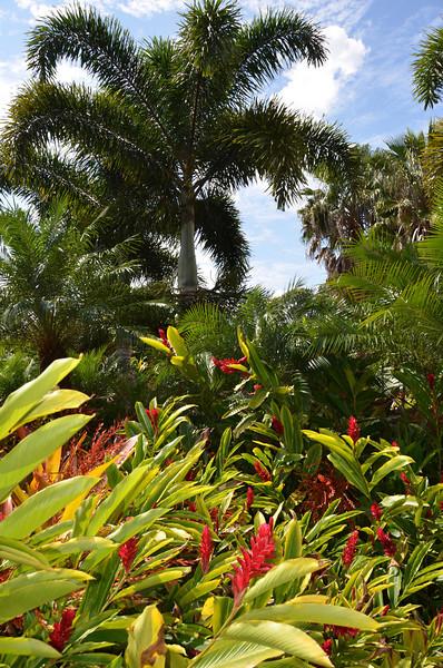 Oahu Hawaii 2011 - 94.jpg