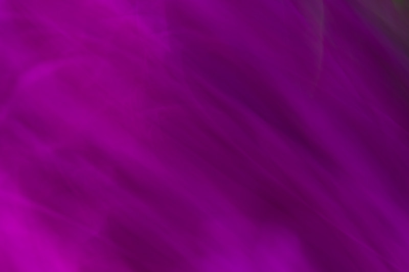 Purple swirls and wiggles of color and action in an abstract photo
