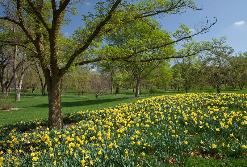 Spring12-1181-Edit copy.jpg