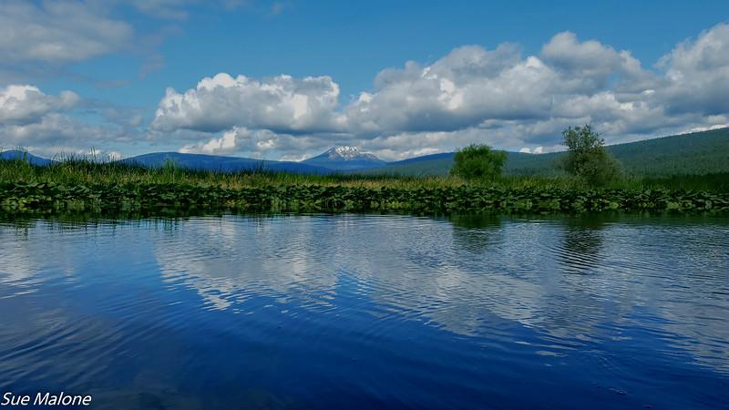 07-16-2019 Crystal Creek Kayak-17.jpg