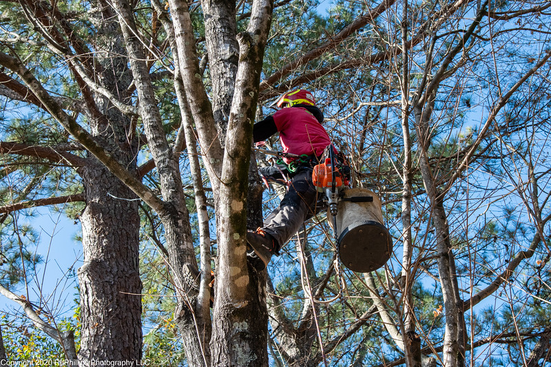 20201209-ArborEquity-9361.jpg