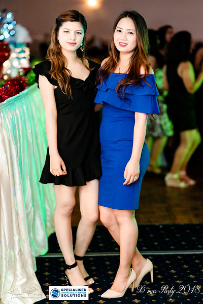 Specialised Solutions Xmas Party 2018 - Web (100 of 315)_final.jpg