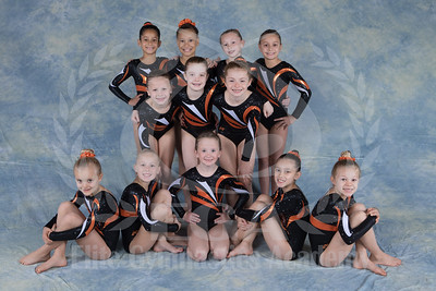 Team 2016 - Girls JO Level 4