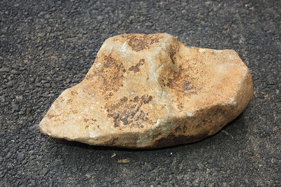 Strange Rocks from the Garden