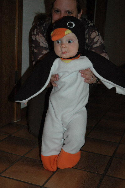March of the Penguin 2 029.jpg
