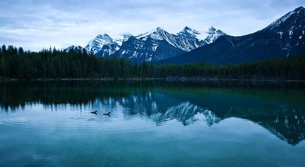 Banff 2008
