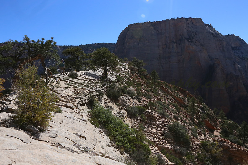 Path along top of Angel's Landing.jpg