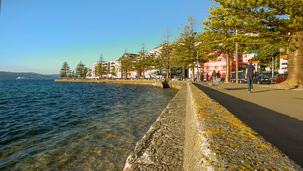 20150503 Timelapse - Oriental Bay  - day  _MG_0574 b.jpg