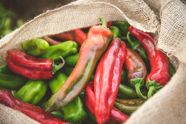 1st Week of August - The Fresh Chile Co.