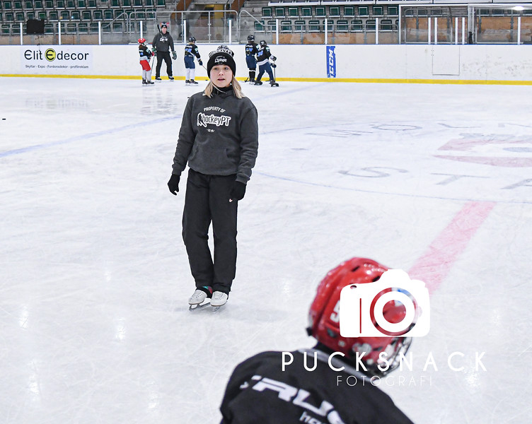 HockeyPT Mellandagascamp 2019-12-28