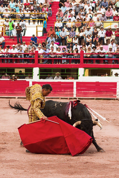 Toros San Buenaventura 2014 026.jpg