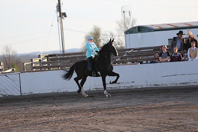 8. Road Horse Under Saddle