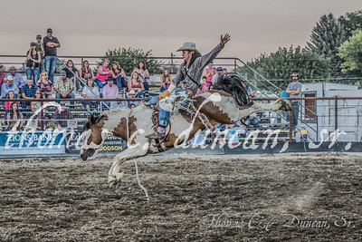 Owyhee County Rodeo 2016 (Thursday Night)