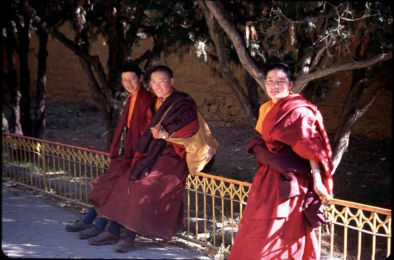 Tibet_Shanghai1_024.jpg