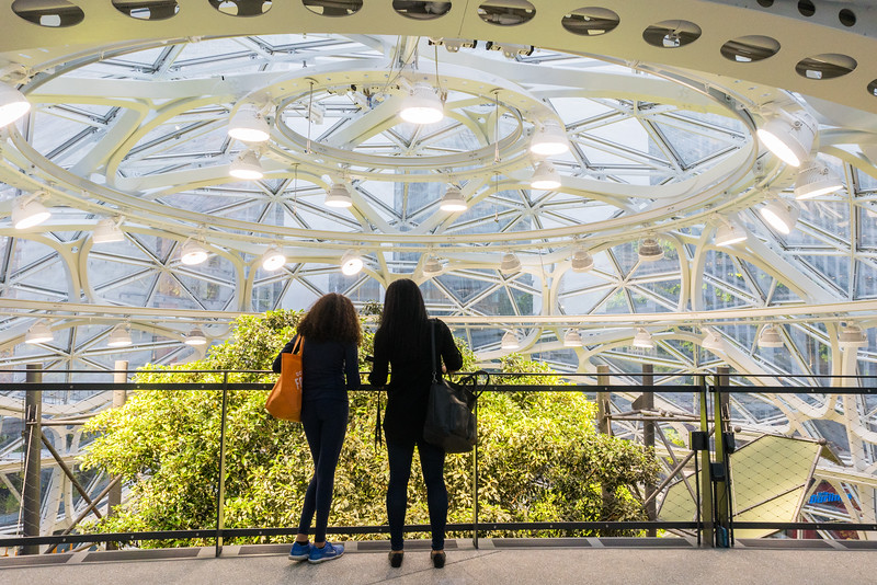 Pratt_Amazon Spheres_016.jpg