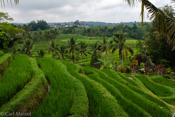 Indonesia - Java & Bali