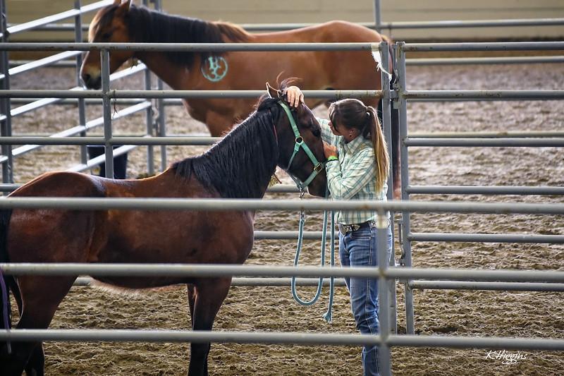 EquusMasters_BrandiLyons_C.jpg