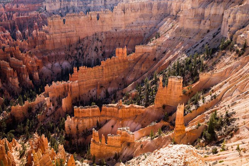 WVWS_Bryce Canyon-6036.jpg