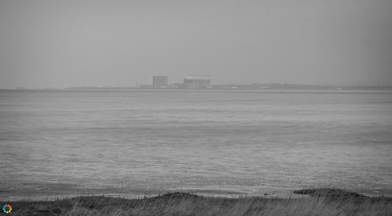 Coast-Mar19 (37 of 45).jpg