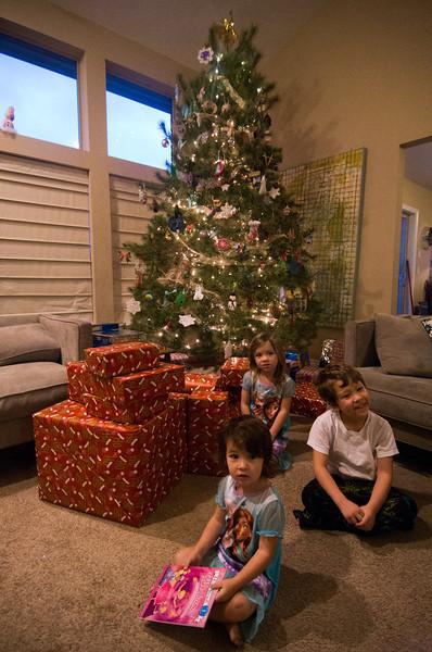 Christmas Day - 2014 - _CAI7320.jpg