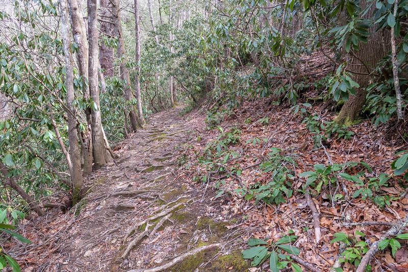 Pilot Cove-Slate Rock Trail -- 2,920'