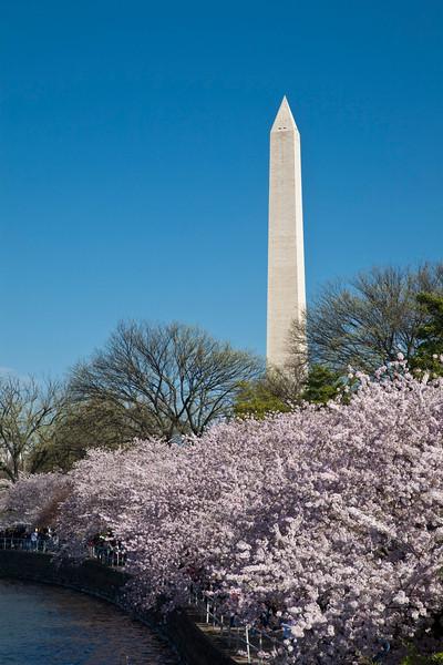 2009-04-05-Washington-DC-0883.jpg