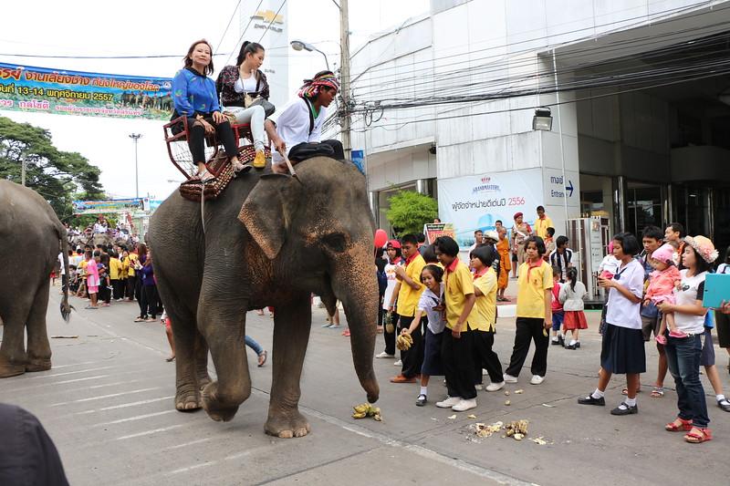 2014-11-14 Surin Elephant Welcome Feast 243.JPG