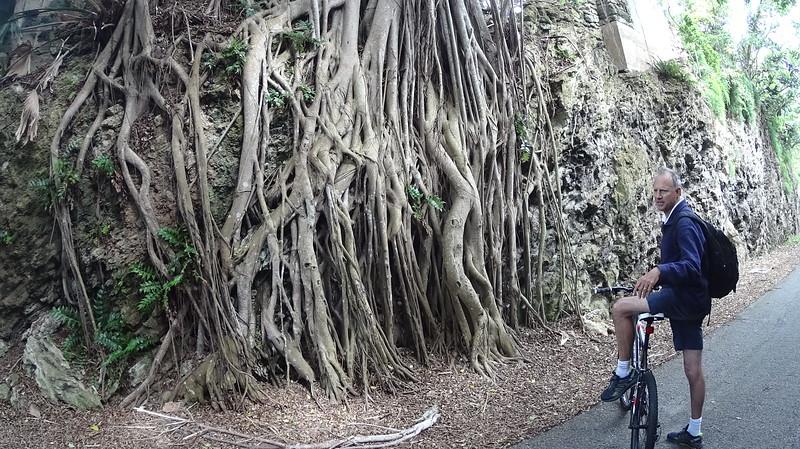Martindell-Adventure_Bermuda-150416-00093.JPG