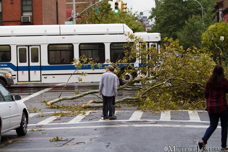 Park Slope, Brooklyn Tornado 9/16/10 - (c) Michael Landry.com
