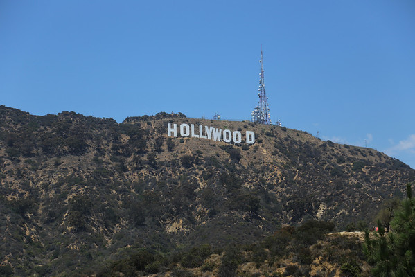 Hollywood 2013
