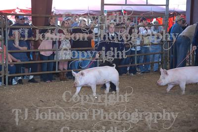 2011 Klein ISD Swine Show Class 2