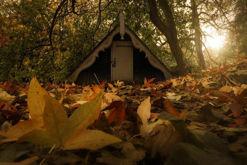 Autumnus.jpg