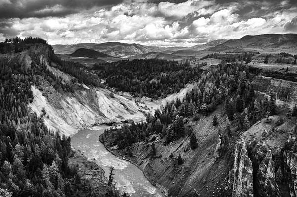 Bleached Cliffs.jpg
