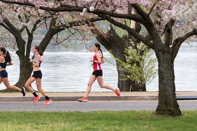 Cherry Blossom 10 Miler 2019