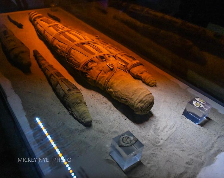 020820 Egypt Day7 Edfu-Cruze Nile-Kom Ombo-6598.jpg