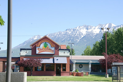 2008-06-15