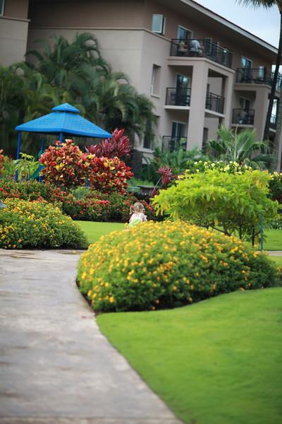 Kauai_D4_AM 012.jpg