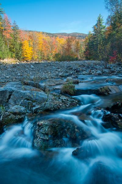 Maine Fall 2019-21.jpg