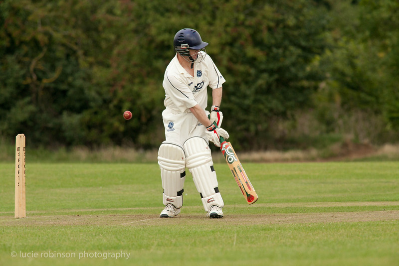 110820 - cricket - 231.jpg