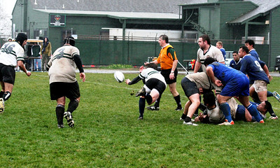 Rugby - San Francisco - Golden Gate