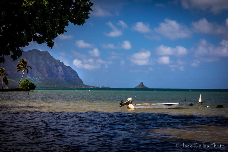 Oahu DF0A2213.jpg