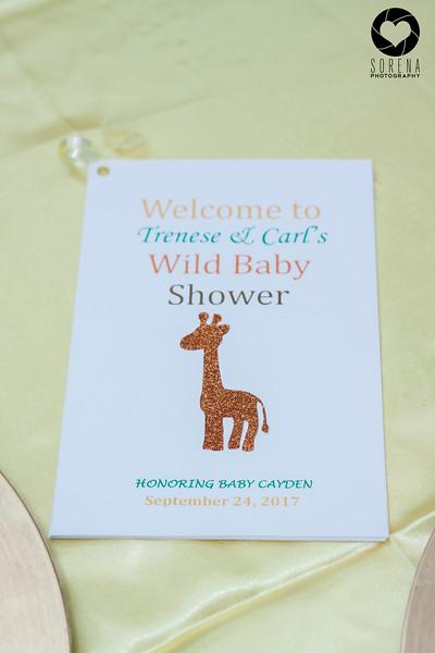 Trenese Safari Babyshower