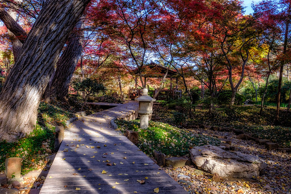 Ft. Worth - Japanese Gardens - 11/29/2017
